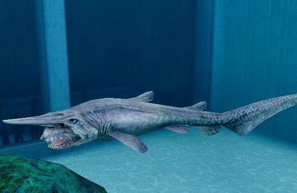 Goblin shark wallpaper