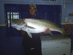 Squaretail fish